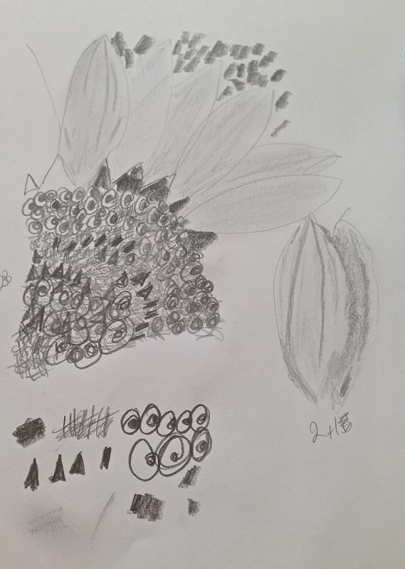 IMG_1267